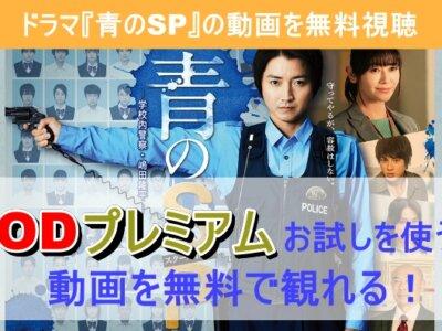 ドラマ『青のSP』の動画を1話から最終話まで無料で観る方法
